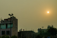 Delhi Sunset - DSC_0321 (John Hickey - fotosbyjohnh) Tags: 2016 holidays october2016 nikon nikond5100 delhi india tourism visitors traveldepartment