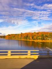 Coastal Maine (Scorpiol13) Tags: landscape nature roadtrip ride driving coastalmaine coast colorsofautumn autumninnewengland maine fall autumn leaves forest trees foliage water