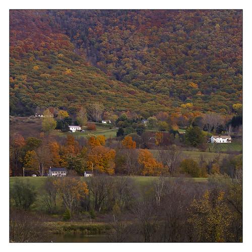 Autumn Colors #3