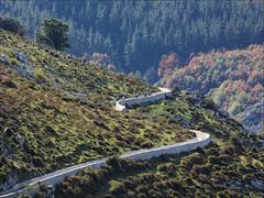 Canal del Juncal (JLL85) Tags: paisaje landscape ladera montaña hill colina cantabria guriezo juncal canal embalse verde naturaleza nature green bosque forest cielo sky españa spain ciclista cycling mountainbike