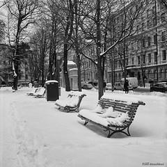 Ruttopuisto, Helsinki (Timo Alatalkkari) Tags: rolleiflex carlzeiss jena 75mm tessar ilford delta 400 id11 urban cityscape