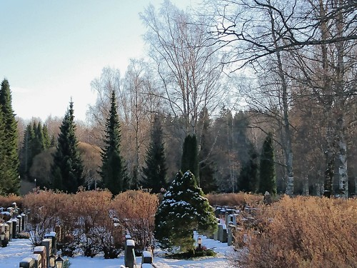 Urn grove