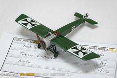 Fokker Eindecker - Grant Matchett