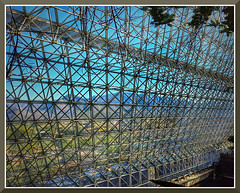 CellPhone20101022-4 (bjarne.winkler) Tags: day8 photo foto safari from inside biosphere 2 north tucson az remember 1 is mother earth
