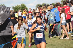 State XC 2016 1865 (Az Skies Photography) Tags: aia state cross country meet aiastatecrosscountrymeet statemeet crosscountry crosscountrymeet november 5 2016 november52016 1152016 11516 canon eos rebel t2i canoneosrebelt2i eosrebelt2i run runner runners running action sport sports high school xc highschool highschoolxc highschoolcrosscountry championship championshiprace statechampionshiprace statexcchampionshiprace races racers racing div division iv girls divsioniv divgirls divisionivgirls divgirlsrace divisionivgirlsrace