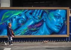 Can't you see? (Valdi-Valdi) Tags: graft graffiti grafite spray spraycan art arte aerosol loop loopcolors brazil brasil artista artist portrait realistic realismo perfeito perfect face pintura painting blue azul mermaid sereia best expressionism valid valdivaldi street urbanist urban streetart