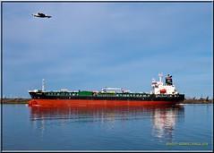 SG Friendship_2448 LR (bradleybennett) Tags: ship shipping cargo tanker tank river delta boat port channel steam large crew crane bay ocean dock pier blue red water line bulkcarrier sg friendship