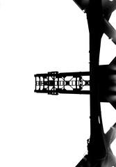PAPILLON (Dinasty_Oomae) Tags: bolsey  bolseyb2 b2  blackandwhite bw monochrome outdoor  tokyo  koutoku  crane