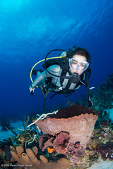 Cayman 2015 (Pedro Paulo Cunha) Tags: uw coral model underwater scuba diving diver cayman reef wetsuit
