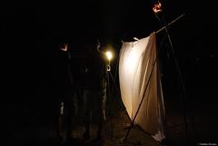 Pige lumineux - Light trap (Mathias Dezetter) Tags: nature animal night insect observation lampe lumire wildlife science lepidoptera papillon animaux nuit trap insecte mouche diptera faune inventaire lepidoptre naturalisme pige invertbr diptres arhtropode