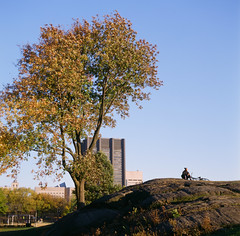 Solitary Outlook (george.bremer) Tags: nyc autumn usa newyork tree film bicycle playground afternoon minolta centralpark manhattan hill kodake100g autocord ektachrome100g