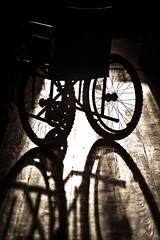 passing impression in sunset (TeDi62) Tags: light sunset wheel shadows floor wheelchair