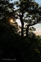 Starburst & Silhouettes (John H Bowman) Tags: virginia parks silhouettes august nationalparks skylinedrive starbursts shenandoahnationalpark 2015 canon2470l jewellhollowoverlook virginiamountains pagecounty august2015