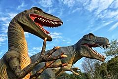 When Dinosaurs Walked the Earth (Gary Burke.) Tags: ca city travel vacation ontario canada tourism canon golf eos rebel niagarafalls dangerous dinosaur display reptile north canadian minigolf niagara raptor figure miniaturegolf dslr predator prehistoric jurassic trex touristattraction velociraptor cliftonhill tyrannosaurusrex garyburke klingon65 t1i canoneosrebelt1i dinosauradventuregolf