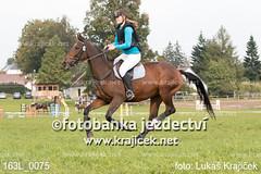 163L_0075 (Lukas Krajicek) Tags: military czechrepublic cz kon koně vysočina vysoina southbohemianregion blažejov dvoreček všestrannost dvoreek