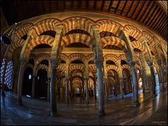 (2182) Mezquita de Crdoba (Fisheye) (QuimG) Tags: architecture golden andaluca spain arquitectura interiors fisheye panasonic crdoba interiores specialtouch mezquitadecrdoba quimg quimgranell joaquimgranell afcastell obresdart