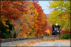 Peek-a-Brookville (RunnningWithScalpels) Tags: railroad foliage metronorth naugatuck mnrr mncr waterburybranch bl20gh