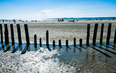 To Freedom (DobingDesign) Tags: wood uk sea sky people sunlight beach water lines reflections sussex coast wooden seaside sticks sand shadows flat outdoor horizon blues symmetry coastal directions coastline thesea protection westwittering groynes diagonals wetsand