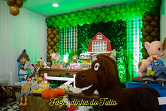 FAZENDINHA DO TULIO 2015 FINAL-9 (agencia2erres) Tags: aniversario 1 infantil festa ano fazenda fazendinha