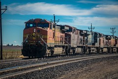 Five-engine locomotives aren't uncommon around here.