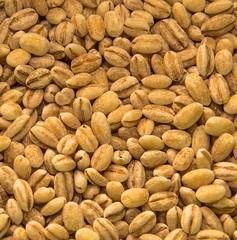78/365 Orzo o pane?/Barley or bread? (darioseventy) Tags: food barley near cereals narrow cibo orzo cereali