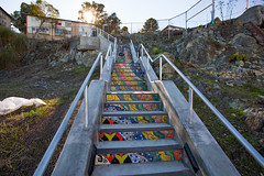 CP6A8405_SF-adventuring_POTD (JustinSchuck) Tags: sanfrancisco art tile mosaic publichousing housingproject theprojects