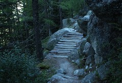 dpart pour la Fentre d'Arpette (bulbocode909) Tags: valais suisse forts arbres nature montagnes sentiers ponts vert trient