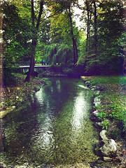 Jägermeister-Bach (Casey Hugelfink) Tags: munich münchen bogenhausen englischergarten englishgarden oberstjägermeisterbach eisbach jägermeister bach creek trees bäume park water bridge brücke