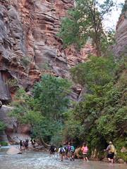 2016-09-p02-narrows-mjl-007 (Mike Legeros) Tags: ut utah zion zionnationalpark narrows river slotcanyon swiftwater wetfeet watchyourstep