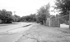 Road and rail 8841 (Tangled Bank) Tags: gainesville florida road train railroad railway bandoned rail trackage track csx csxt spur siding