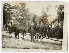 . (Kaïopai°) Tags: leiterwagen kutsche ernte farm bauernhof landwirtschaft pferd cheval vintage heu farming istrup