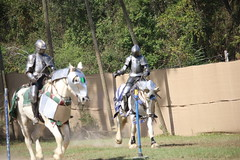 IMG_4743 (joyannmadd) Tags: renaissance hammond louisiana festival jousting birds prey celtic queens kings laren fest juggler washing well wenches wiskey bay rovers music midevil combat horse war fight armour joust dual knives knight shining run outdoor competition
