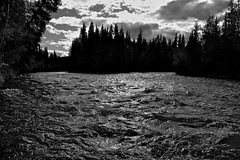 Rowlinson Creek Gushes into the Nordenskiold River (MIKOFOX  Show Your EXIF!) Tags: yukon spruce creek nordenskioldriver blackandwhite river canada xt1 september waterway mikofox rapids fall water showyourexif monochrome bw fujifilmxt1 landscape clouds whitewater xf18135mmf3556rlmoiswr