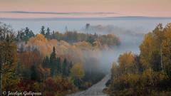 CE MATIN (jocelyn.galipeau) Tags: paysage qubec canada clova matin lev de soleil brume brouillard fort automne lever