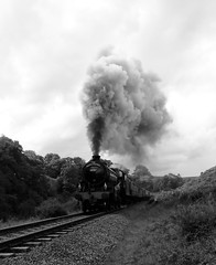 Black and White Steam (Stephen Robb Photography) Tags: nymrphotos nymr gala manor lner b1 br standard locomotive steam railway train engine gwr great western hill countryside yorkshire north moors 61264 76079 76084 7822 black white monochrome sony camera user