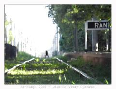 Ranelagh 2016 - Diaz De Vivar Gustavo (Diaz De Vivar Gustavo) Tags: ranelagh 2016 diaz de vivar gustavo ciudad parque electrificacion ferroviaria tren trenes vias train desenfoque