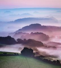 Dawn Palette (Tony Gill) Tags: dorset dawn mist colours palette hills landscape