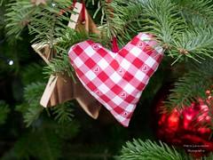 Mit Herz geschmckt (gartenzaun2009) Tags: advent herz weihnachten