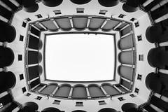 Nose up 2016-02-08 140723 BW SEP (AnZanov) Tags: architettura architecture building palazzo palazzi buildings genova zena genoa liguria italia italy europa europe hdr photomatix hdri highdynamicrange multipleexposures bracketing bracketed fisheye samyang ojodepez occhiodipesce 8mm nikon d7000 anzanov andrea zanovello photographer photography scala stairs stair escalera spiral chiocciola staircase steps bianco nero bw bn black white noire blanc