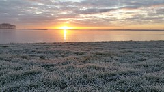 Sunrise (Jaco Verheul) Tags: outdoor landscape waterscape sky water field frozen serene dawn sunrise lake phonephoto samsung trees tree grass white green orange cloud