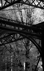 Delicately strong... (Paul Griffiths Photos) Tags: ifttt 500px bridge old outdoors architecture travel amsterdam iron tree vintage transportation system leaf city urban