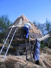Teitando o cabaceiro (Vivenzo - Meln - Ourense) (XAV FEIX OO) Tags: cabaceiro hrreo etnografa arquitecturatradicionalgalega vivenzo meln ourense tradicin galega galego galicia
