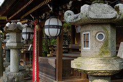 日本 京都奈良5日遊 Koyto&Nara JAPAN_20160225_284 (PS612) Tags: 日本 京都府 北野天滿宮 kitanotenmangushrine sagano kyoto japan spring fujifilmxt10
