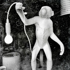 Shedding the light on other primates ( if that's possible ) (Dom Guillochon) Tags: noiretblanc light electricity humans people time life existence reality dream monkey fantasy primate