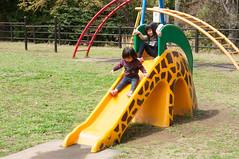Cozy morning (Wunkai) Tags: kasamashi ibarakiken japan  jeanwang  playground slide  recreationalfacility