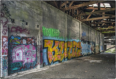 Wall Art (NoJuan) Tags: 6d eos6d 28cmf35nikkornai graffiti wallart manualfocuslensondslr eoswithmanualfocuslens nikkor nikkorlens