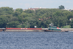 JOYCE BROWN in New York, USA. July. 2015 (Tom Turner - SeaTeamImages / AirTeamImages) Tags: nyc usa newyork green water brooklyn port bay harbor marine unitedstates harbour transport spot pony maritime transportation tugboat tug statenisland bigapple tow barge channel narrows spotting waterway towing tomturner joycebrown bmlp