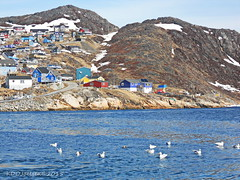 Qaqortoq05022012DSCN9784 (k_joelsen326) Tags: flowers trees winter summer people fish snow mountains art fall chicken ice cooking dogs cakes vegetables children reindeer boats spring fishing artwork knitting gardening sewing beef ships jets blossoms hunting sunsets arctic yarn countries pork greenland pies planes inuit seals bulbs whales recipes oceans helicopters shrubs harbors fjords icebergs seas crocheting groundcovers perrenials fibercrafts qaqortoq southgreenland vallleys arcticliving worldslargestisland annueals