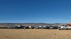 1-(#0826)-Oregon - Lake County, branding (VFR Rider) Tags: ranch usa cowboys oregon cowboy cattle cows branding lakecounty ranchlife cattleranch