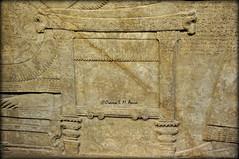 Assyrian king's throne (Assyria, Babylon, Akkad, Sumer...) Tags: bucket spirit iraq relief bracelet sword turban protective britishmuseum bas mesopotamia bowel alabaster sheath polos ashurnasirpal nimrud kalhu armlet apkallu royalthrone headdess calah banduddu